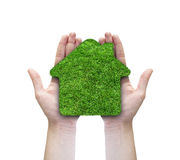 Green grass home icon in his hands. Abstract green grass house on over white background. Ecology concept stock photo