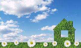 Green grass house Royalty Free Stock Photography