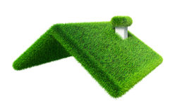 Green grass house roof Stock Image