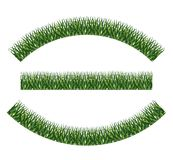 Green grass plant design. Green grass icon. lawn plant nature and field theme. Isolated design. Vector illustration Stock Photos