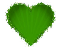 Green grass illustration heart Royalty Free Stock Photography