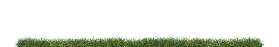 Free Green Grass Isolated. Stock Images - 92711604