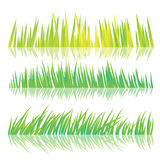 Green Grass, Isolated On White Background, Vector Illustration Stock Image
