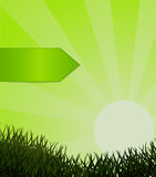 Green grass and label against the sky. Vector Royalty Free Stock Photo