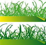 Green grass labels. Illustration of green grass blades with a label Stock Photo