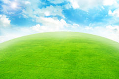 Green grass landscape. Agriculture background beautiful beauty blue clear royalty free stock photo