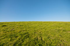 Green Grass Landscape and blue sky at Berkeley Mar. Ina in the East Bay, California Royalty Free Stock Image