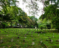 Green grass large cemetery. Green grass a large cemetery Royalty Free Stock Image