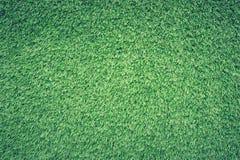 Green Grass Lawn Royalty Free Stock Photos