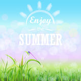 Green grass lawn with bokeh blue sky. Enjoy summer text on the Floral nature summer spring background. Stock Photos