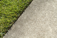 Green Grass Lawn And A Concrete Sidewalk Edge Meet. At the boundary edge where green grass in a lawn and a concrete sidewalk meet on a sunny summer day in a Royalty Free Stock Image