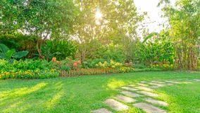 Green grass lawn in a garden with random pattern of grey concrete stepping stone , Flowering plant, shurb and trees on backyard