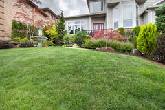 Green Grass Lawn in Manicured Frontyard Garden Stock Image