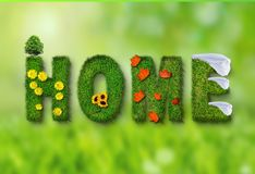 Green, Grass, Lawn, Organism Royalty Free Stock Image