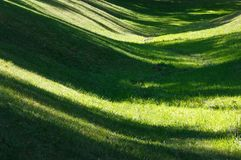 Green grass lawn with shadows. Perfect green grass lawn on landscape designed summer park hollow. Striped shadows on curved meadow surface of grass lawn Royalty Free Stock Photo