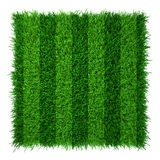 Green grass lawn soccer field. Realistic texture.  Royalty Free Stock Photography