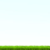 Green grass lawn with sunrise on blue sky. Vector illustration Stock Photos