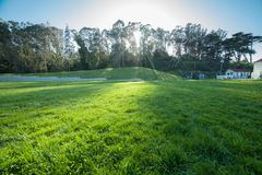 Green grass lawn at sunset time in Golden Gate city park in San Francisco with no people.  Stock Photos