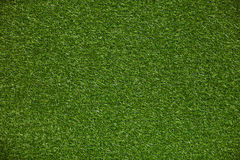 Green grass lawn Royalty Free Stock Images