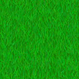 Green grass lawn Stock Images
