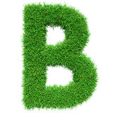 Green Grass Letter B Royalty Free Stock Photography