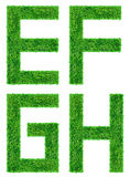 Green Grass Letter isolated Stock Images