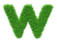 Green Grass Letter W Royalty Free Stock Images