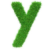 Green Grass Letter Y Stock Photos