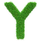 Green Grass Letter Y Stock Photography