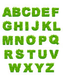 Green grass letters of alphabet Stock Photography