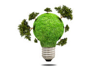 Green grass light bulb isolated Stock Photo