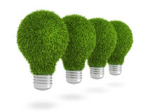 Green grass light bulb row Royalty Free Stock Photography