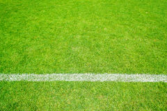 Green grass with line. Green grass of football sport field with white line for background royalty free stock photos