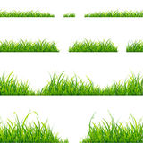 Green Grass Line Set. Vector. Green Grass Line Set On White Background. Vector illustration Royalty Free Stock Photography