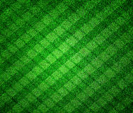 Green grass lined royalty free stock images