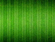 Green grass lined royalty free stock image