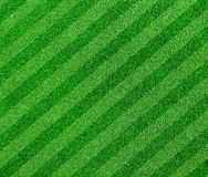 Green grass lined soccer field royalty free stock photography