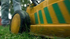 Green grass and man with lawnmower. low angle view, slow motion shot stock video footage