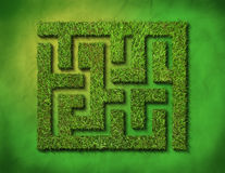Green grass maze. On green background. clipping path is included Royalty Free Stock Photography