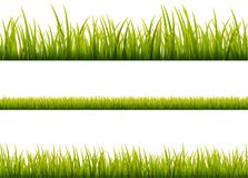 Green grass meadow border vector pattern. Spring or summer plant field lawn. Grass background.  Stock Image