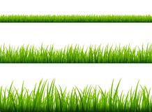 Green grass meadow border vector pattern. Spring or summer plant field lawn. Grass background.  vector illustration