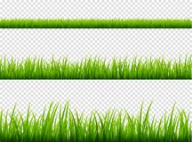 Green grass meadow border vector pattern. Spring or summer plant field lawn. Grass background.  Royalty Free Stock Photography