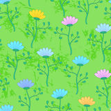 Green grass meadow with flowers, summer seamless pattern Royalty Free Stock Images