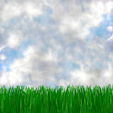 Green Grass Meets Blue Sky. A green, grassy field and cloudy blue sky, makes for a beautiful background Royalty Free Stock Images