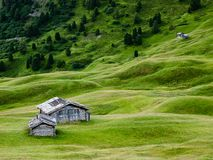 Green grass and mountain huts in Trentino, Italy Stock Image