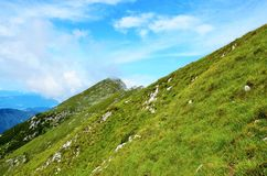 Green grass on mountain side Royalty Free Stock Photography