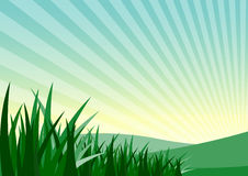 green grass and mountain Stock Photography
