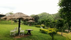 Green grass and Mountain view. At Khao Yai Stock Photos