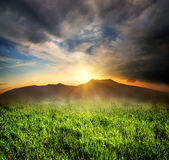 Green grass in mountains Stock Photo