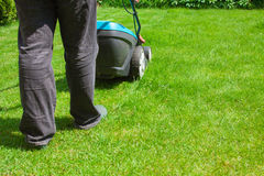 Green grass is mowed lawn mower Stock Photo